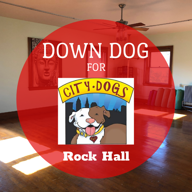 Down Dog for City Dogs in April