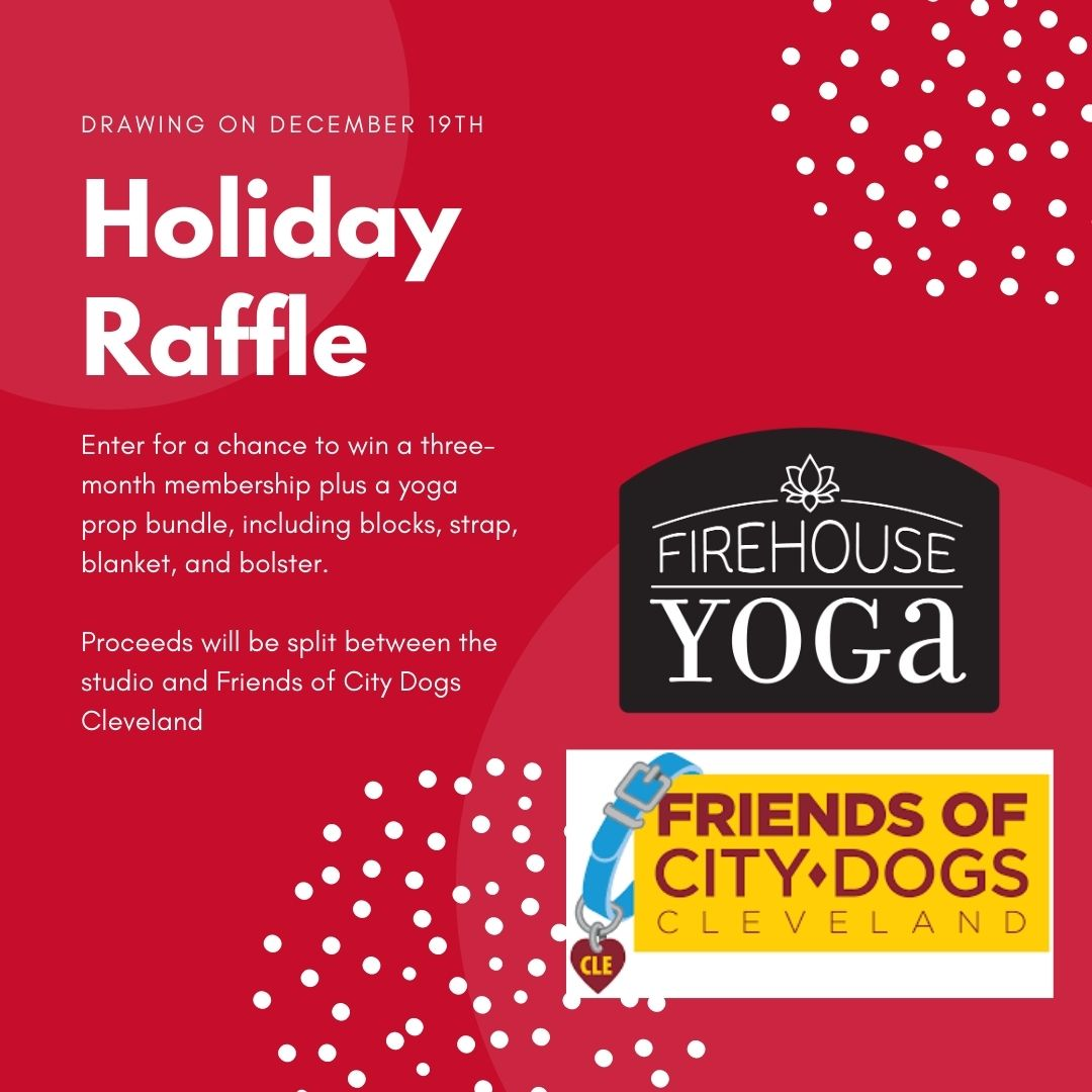 Holiday Raffle for the Studio and City Dogs!