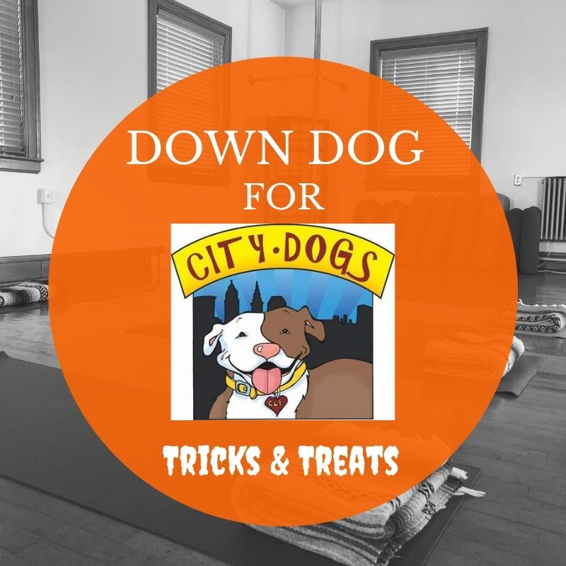 Down Dog for City Dogs in October: Tricks & Treats